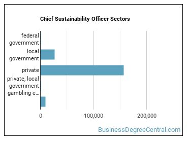 Chief Sustainability Officer Sectors
