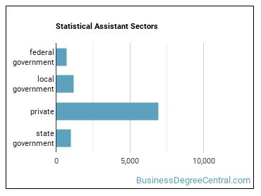 Statistical Assistant Sectors