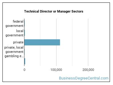 Technical Director or Manager Sectors