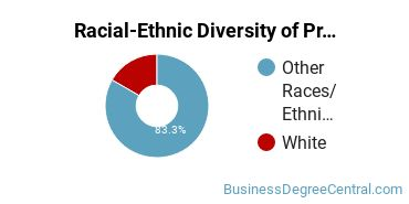 Racial-Ethnic Diversity of Project Management Majors at American University