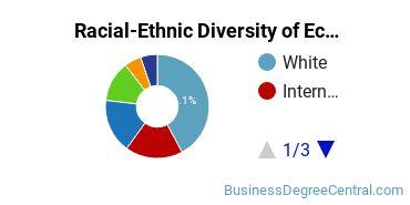 Racial-Ethnic Diversity of Economics Majors at American University