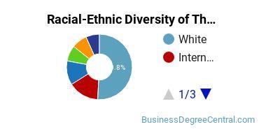 Racial-Ethnic Diversity of The American University Undergraduate Students