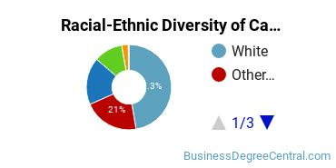 Racial-Ethnic Diversity of Capella University Undergraduate Students