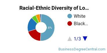 Racial-Ethnic Diversity of Louisiana State University - Shreveport Undergraduate Students