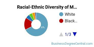 Racial-Ethnic Diversity of McNeese Undergraduate Students