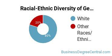 Racial-Ethnic Diversity of General Economics Majors at Saint Cloud State University