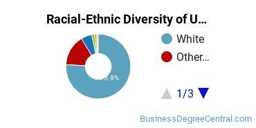 Racial-Ethnic Diversity of UM Undergraduate Students