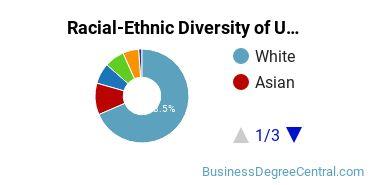Racial-Ethnic Diversity of UGA Undergraduate Students
