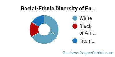Racial-Ethnic Diversity of Entrepreneurial Studies Majors at University of Indianapolis