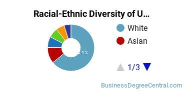 Racial-Ethnic Diversity of UMN Twin Cities Undergraduate Students
