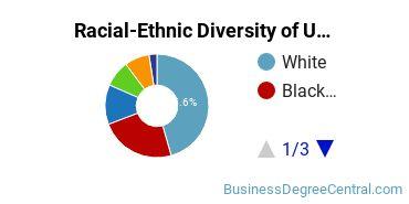 Racial-Ethnic Diversity of UNO Undergraduate Students