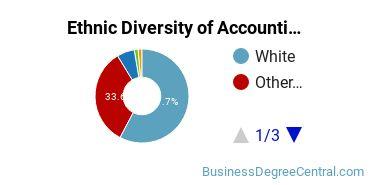 Accounting Majors in AK Ethnic Diversity Statistics
