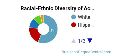 Racial-Ethnic Diversity of Accounting Associate's Degree Students