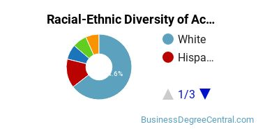 Racial-Ethnic Diversity of Accounting Bachelor's Degree Students