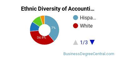 Accounting Majors in CA Ethnic Diversity Statistics