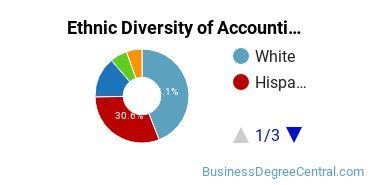 Accounting Majors in FL Ethnic Diversity Statistics