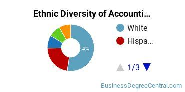 Accounting Majors in NJ Ethnic Diversity Statistics