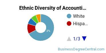 Accounting Majors in RI Ethnic Diversity Statistics