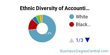 Accounting Majors in SC Ethnic Diversity Statistics