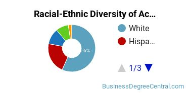 Racial-Ethnic Diversity of Accounting Undergraduate Certificate Students