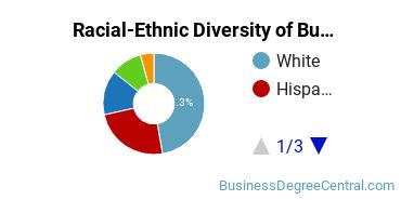 Racial-Ethnic Diversity of Business Administration Associate's Degree Students