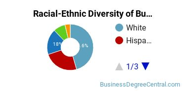 Racial-Ethnic Diversity of Business Administration Basic Certificate Students