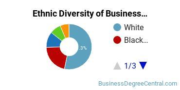 Business Administration & Management Majors in DE Ethnic Diversity Statistics