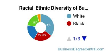 Racial-Ethnic Diversity of Business Administration Doctor's Degree Students