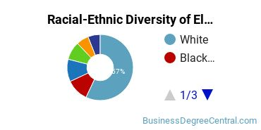 Racial-Ethnic Diversity of Electronic Commerce Students with Bachelor's Degrees