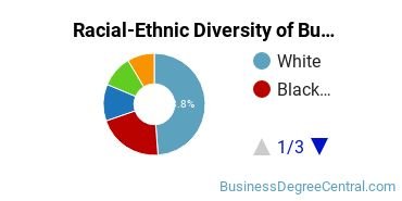 Racial-Ethnic Diversity of Business Administration Graduate Certificate Students
