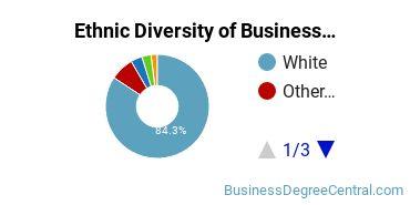 Business Administration & Management Majors in ME Ethnic Diversity Statistics