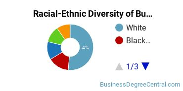 Racial-Ethnic Diversity of Business Administration Master's Degree Students