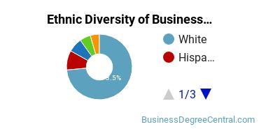 Business Administration & Management Majors in NE Ethnic Diversity Statistics