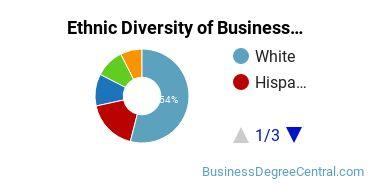 Business Administration & Management Majors in NJ Ethnic Diversity Statistics