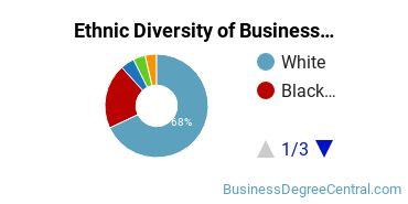 Business Administration & Management Majors in SC Ethnic Diversity Statistics