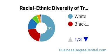 Racial-Ethnic Diversity of Transportation/Mobility Management Students with Bachelor's Degrees