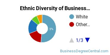 Business Administration & Management Majors in VA Ethnic Diversity Statistics