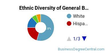 Business & Commerce Majors in FL Ethnic Diversity Statistics
