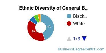 Business & Commerce Majors in GA Ethnic Diversity Statistics