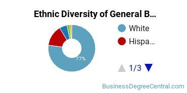 Business & Commerce Majors in ID Ethnic Diversity Statistics