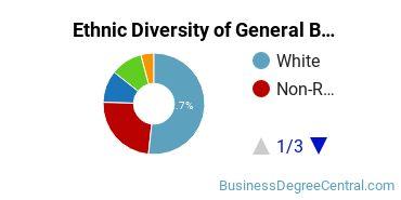 Business & Commerce Majors in MA Ethnic Diversity Statistics