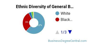 Business & Commerce Majors in MS Ethnic Diversity Statistics