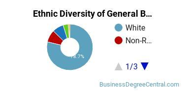 Business & Commerce Majors in MT Ethnic Diversity Statistics