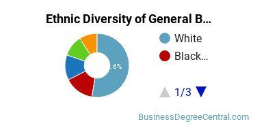 Business & Commerce Majors in NY Ethnic Diversity Statistics