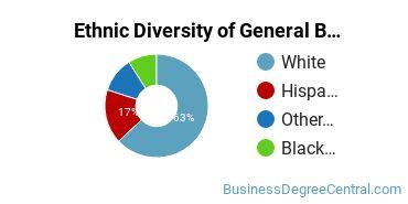 Business & Commerce Majors in RI Ethnic Diversity Statistics