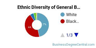 Business & Commerce Majors in SC Ethnic Diversity Statistics