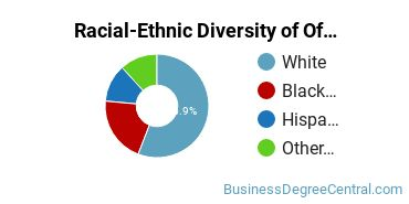 Racial-Ethnic Diversity of Office Automation Students with Bachelor's Degrees