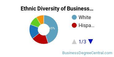 Business Support & Assistance Majors in KS Ethnic Diversity Statistics