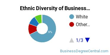 Business Support & Assistance Majors in MN Ethnic Diversity Statistics