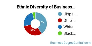 Business Support & Assistance Majors in NM Ethnic Diversity Statistics
